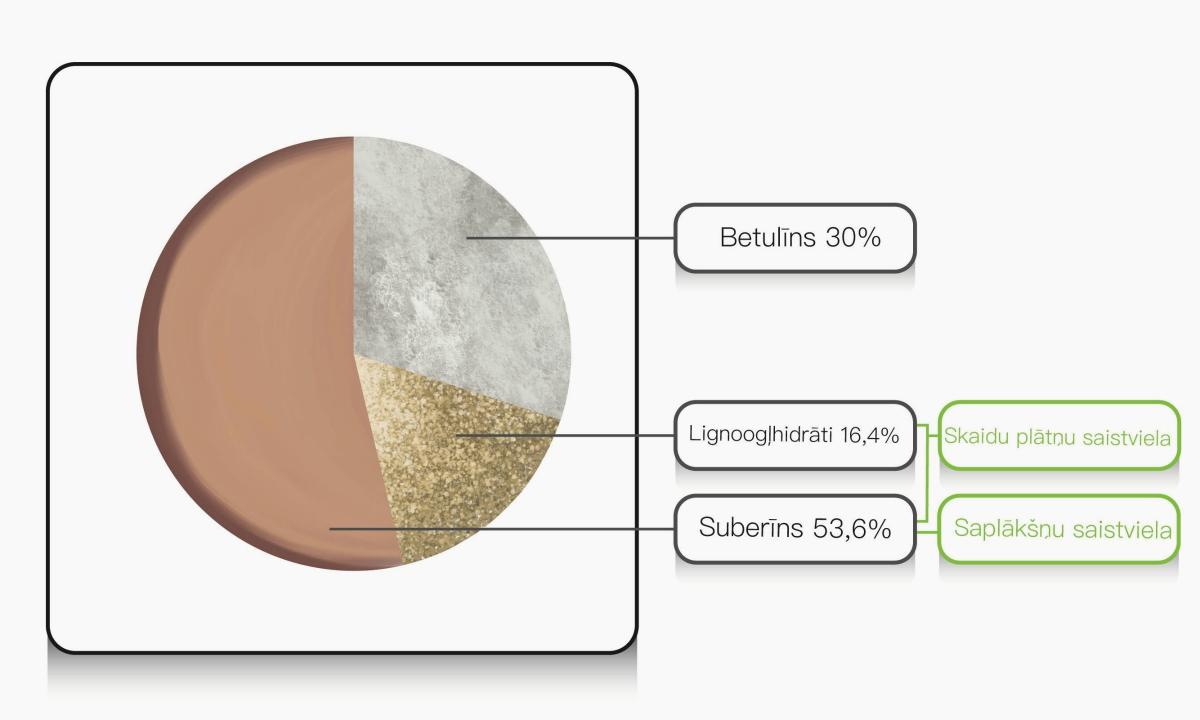 Suberīnskābes un lignoogļhidrātu komplekss kopā veido 70% bērza tāss